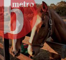 B Metro - Nolen Barn
